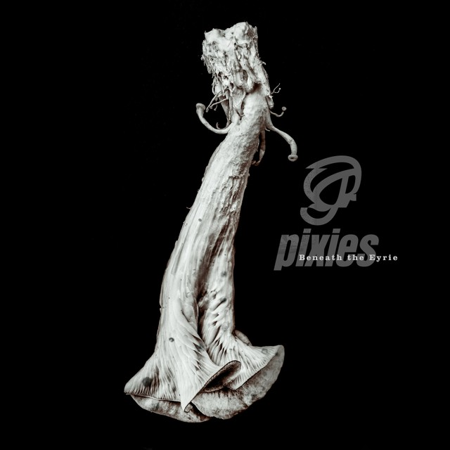 Album cover of Pixies'