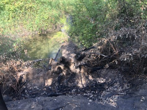 One person injured in early morning Comanche Creek fire