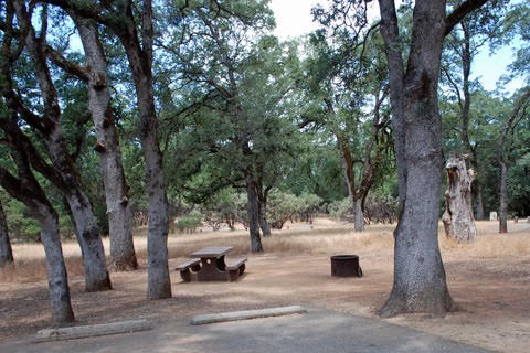 Loafer Creek Campground during the daytime. Image provided by Californias Best Campgrounds Photo credit: Angelina Mendez