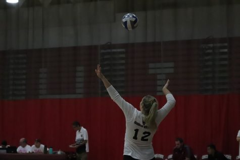 Wildcats' Five set battle results in loss against Toros