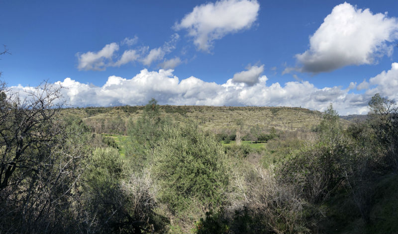 View of Bidwell Park and golf course from the trail by Big Chico creek Photo credit: Matthew Ferreira