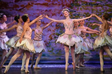 nutcracker3-opt.jpg
