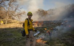 Prescribed fire lights sustainable path forward