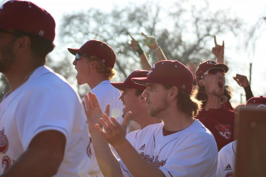 Wildcats cheer on their teammates from the dugout.