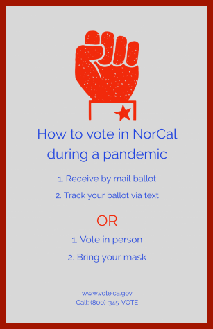 Voting during a Pandemic
