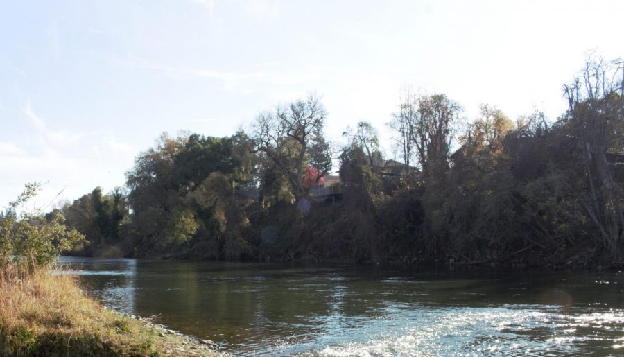 a photo of the Sacramento river