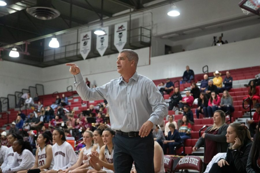 Women's head basketball coach Brian Fogel coaches his team during a basketball game at Chico State. (Ryan McCasland/Chico State Sports Information)