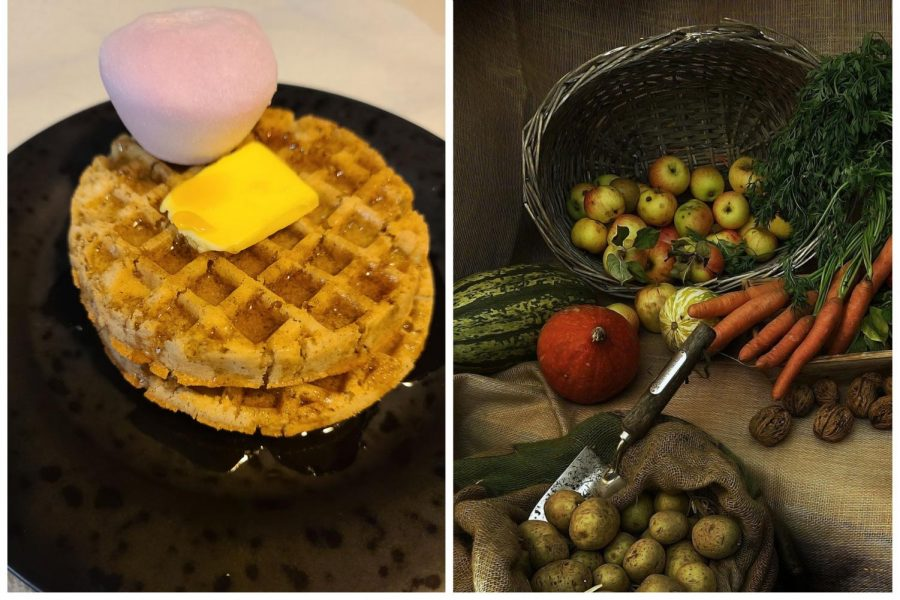 'Waffles + Mochi' lends hope for a food-secure future