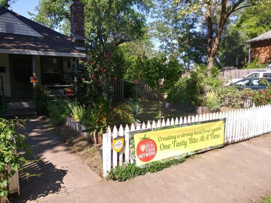 The Vecino Victory Garden near Laburnum Avenue in Chico, is a local community garden.