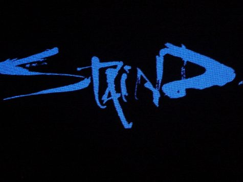"Staind premiered never-before-seen concert footage on Saturday, May 1. Photo credit: ""Staind"" by Shaun Dewberry is licensed with CC BY-NC-SA 2.0."