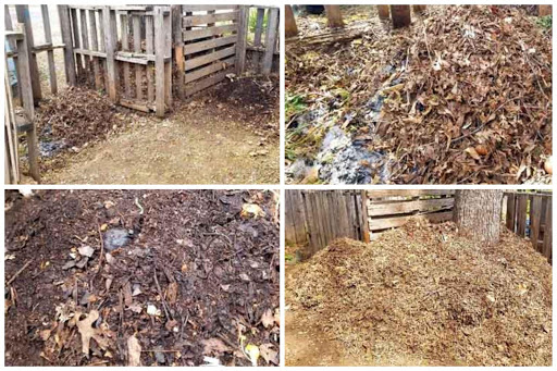 """(Top left) The start of the 2 Bin system, the left side of the bin is fresh material while the right side of the bin is nearly finished compost content, just needs a little bit of sifting and will be ready for use. (Top right) A mixture of food scraps, and leaves creating brown carbon. This pile will need to be turned and mixed before being moved to the finished compost bin. (Bottom left) The finished bin just needs to be mixed and sifted one more time and """"Voila"""" we have fresh soil. (Bottom right) The storage of autumn leaves to add to the compost pile as needed."""