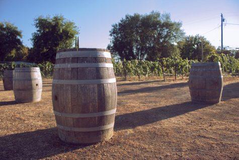 Sierra Oro Farm Trail celebrates October harvest with mobile 'Farm & Wine Pass'