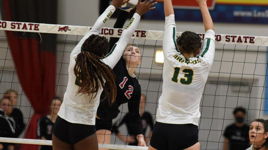 Chico+State+starting+middle+hitter+Makaela+Keeve