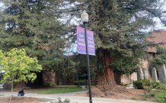 One of Chico States slogans around campus