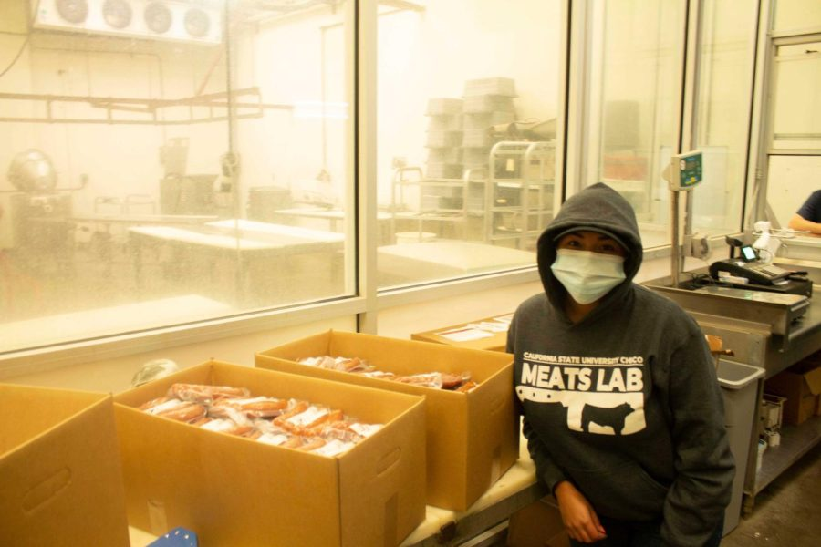 Meats Lab student Alexandria Ramirez boxing the freshly made sausages for a package, taken on Oct. 15, 2021.